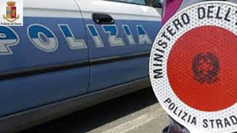 Incidenti stradali: il mancato soccorso di animali può configurare un … – Firenze Post