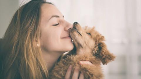 Depressione: gli animali domestici aiutano a curarla – Informare Sicilia