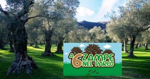 """VENAFRO – """"A 6 zampe nel Parco"""", migliorare il rapporto cane … – Molise Network"""
