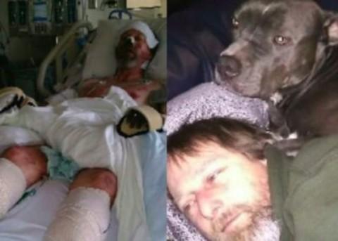Il cane lo lecca: gli amputano braccia, gambe e naso – FOTO – CheDonna.it