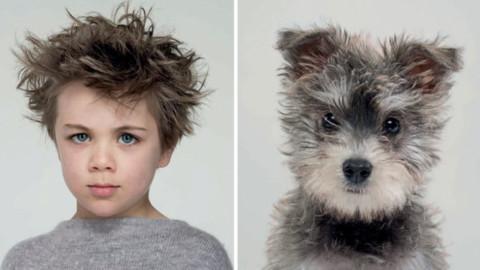 Quanto assomigliate al vostro cane? Le foto – Vanity Fair.it