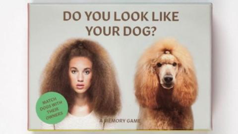 Cani e padroni fotografati insieme: la somiglianza è evidente … – MondoFox